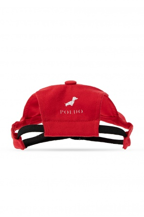 Dog baseball cap od Dsquared2