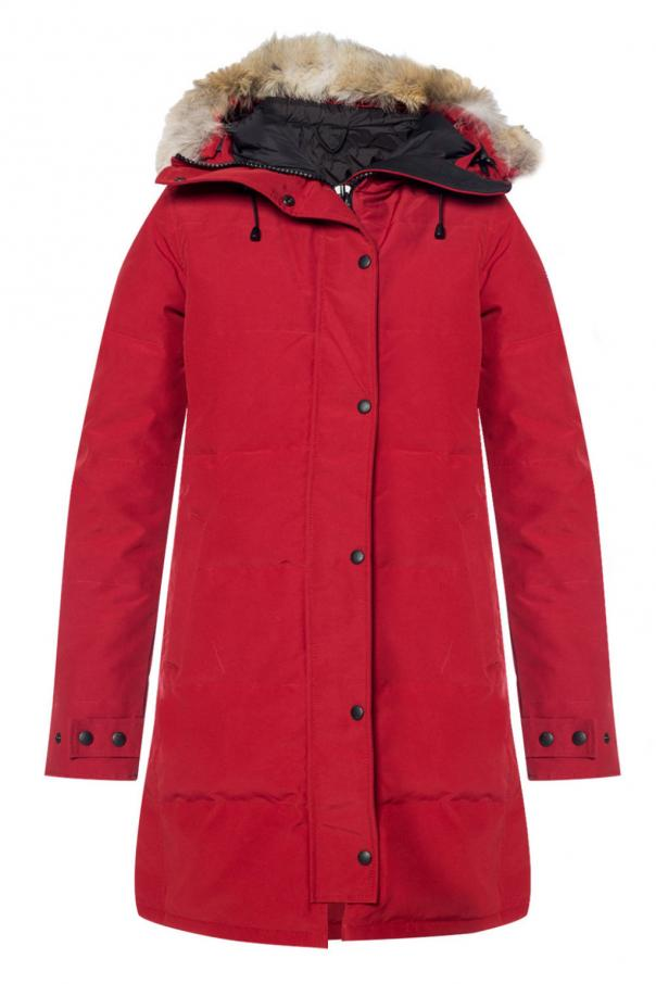 Canada Goose Jacket with a hood