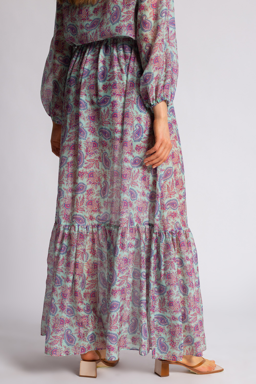 Etro Transparent skirt